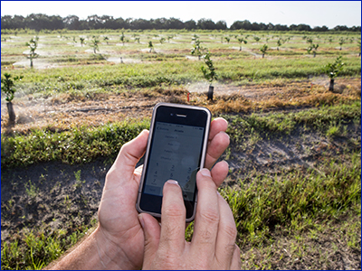 An IFAS irrigation app on a smartphone, photo by Tyler Jones, UF/IFAS