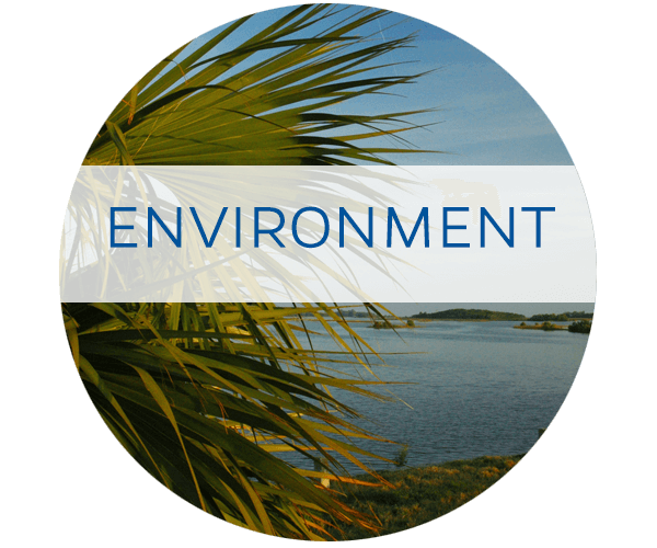 UF/IFAS Water In the Environment